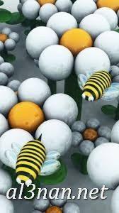 احدث-خلفيات-موبايل-بناتHD-خلفيات-جوال-روعة-للبنات_00106-1-168x300 احدث خلفيات موبايل بناتHD خلفيات جوال روعة للبنات