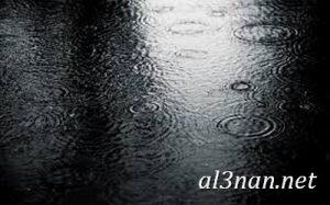 بجودة عالية جدا صور باللون الاسودHD خلفيات سوداء 00162 300x187 بجودة عالية جدا صور باللون الاسودHD خلفيات سوداء