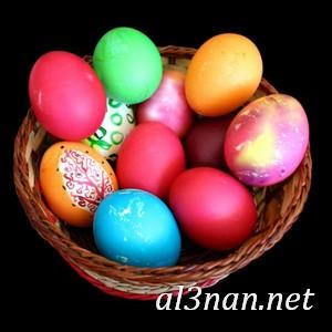 بيض شم النسيم صور رمزيات وخلفيات بيض ملون 00002 2 بيض شم النسيم صور رمزيات وخلفيات بيض ملون