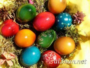 بيض شم النسيم صور رمزيات وخلفيات بيض ملون 00005 2 300x226 بيض شم النسيم صور رمزيات وخلفيات بيض ملون