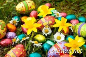 بيض شم النسيم صور رمزيات وخلفيات بيض ملون 00011 2 300x200 بيض شم النسيم صور رمزيات وخلفيات بيض ملون