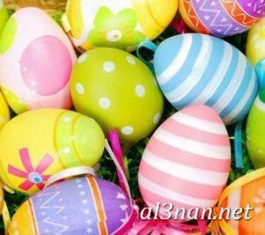 بيض شم النسيم صور رمزيات وخلفيات بيض ملون 00012 2 300x266 بيض شم النسيم صور رمزيات وخلفيات بيض ملون
