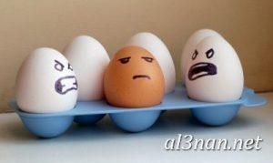 بيض شم النسيم صور رمزيات وخلفيات بيض ملون 00014 2 300x179 بيض شم النسيم صور رمزيات وخلفيات بيض ملون