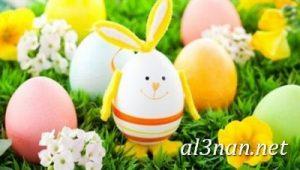 بيض-شم-النسيم-صور-رمزيات-وخلفيات-بيض-ملون_00016-2-300x170 بيض شم النسيم صور رمزيات وخلفيات بيض ملون