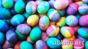 بيض شم النسيم صور رمزيات وخلفيات بيض ملون 00027 2 300x168 بيض شم النسيم صور رمزيات وخلفيات بيض ملون