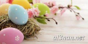 بيض شم النسيم صور رمزيات وخلفيات بيض ملون 00030 2 300x152 بيض شم النسيم صور رمزيات وخلفيات بيض ملون