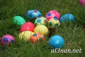 بيض شم النسيم صور رمزيات وخلفيات بيض ملون 00046 2 300x200 بيض شم النسيم صور رمزيات وخلفيات بيض ملون