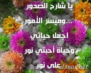 رمزيات اسلامية روعه للواتس 2019 صور اسلامية جميلة 00099 300x241 رمزيات اسلامية روعه للواتس 2019 صور اسلامية جميلة