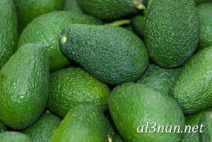 صور-افوكادو-رمزيات-وخلفيات-فاكهة-الافوكادو_00125-300x201 صور افوكادو رمزيات وخلفيات فاكهة الافوكادو