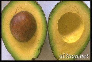 صور-افوكادو-رمزيات-وخلفيات-فاكهة-الافوكادو_00147-300x201 صور افوكادو رمزيات وخلفيات فاكهة الافوكادو