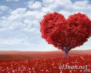صور الفلانتين 2019 صور عيد الحب رمزيات و خلفيات عالية الجودة 00175 1 300x240 صور الفلانتين  2019 صور عيد الحب رمزيات و خلفيات عالية الجودة