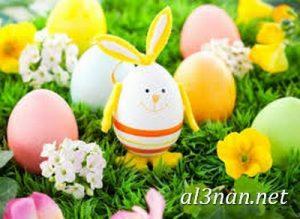 صور بيض شم النسيم احدث الوان بيض لشم النسيم 00155 1 300x219 صور بيض شم النسيم احدث الوان بيض لشم النسيم