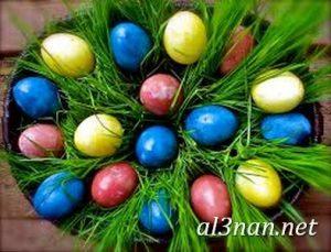 صور بيض شم النسيم احدث الوان بيض لشم النسيم 00159 1 300x229 صور بيض شم النسيم احدث الوان بيض لشم النسيم