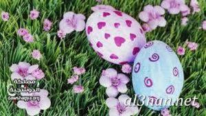 صور بيض شم النسيم احدث الوان بيض لشم النسيم 00170 1 300x169 صور بيض شم النسيم احدث الوان بيض لشم النسيم