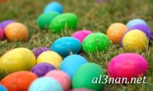 صور بيض شم النسيم احدث الوان بيض لشم النسيم 00193 300x179 صور بيض شم النسيم احدث الوان بيض لشم النسيم