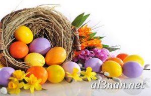 صور بيض شم النسيم احدث الوان بيض لشم النسيم 00198 300x191 صور بيض شم النسيم احدث الوان بيض لشم النسيم
