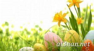صور بيض شم النسيم احدث الوان بيض لشم النسيم 00200 300x164 صور بيض شم النسيم احدث الوان بيض لشم النسيم