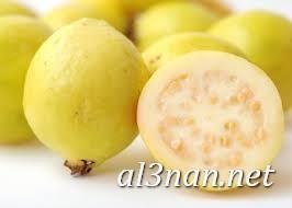 صور جوافة رمزيات وخلفيات جوافة وعصير جوافة 00161 صور جوافة رمزيات وخلفيات جوافة وعصير جوافة