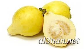 صور جوافة رمزيات وخلفيات جوافة وعصير جوافة 00174 صور جوافة رمزيات وخلفيات جوافة وعصير جوافة