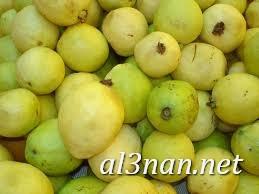 صور جوافة رمزيات وخلفيات جوافة وعصير جوافة 00177 صور جوافة رمزيات وخلفيات جوافة وعصير جوافة