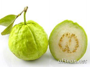 صور جوافة رمزيات وخلفيات جوافة وعصير جوافة 00178 300x224 صور جوافة رمزيات وخلفيات جوافة وعصير جوافة
