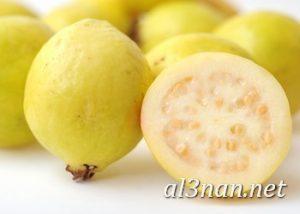 صور جوافة رمزيات وخلفيات جوافة وعصير جوافة 00183 300x214 صور جوافة رمزيات وخلفيات جوافة وعصير جوافة