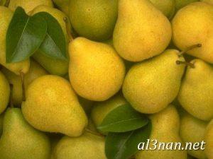 صور-جوافة-رمزيات-وخلفيات-جوافة-وعصير-جوافة_00198-300x225 صور جوافة رمزيات وخلفيات جوافة وعصير جوافة