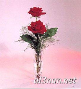 صور-حب-جميلة-جدا-احلى-صور-خلفيات-رومانسية-غرامية_00168-274x300 صور حب جميلة جدا احلى صور خلفيات رومانسية غرامية