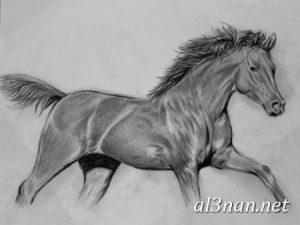 صور-حصان-رمزيات-و-خلفيات-خيل-عربي-اصيل-2019_00201-1-300x225 صور حصان رمزيات و خلفيات خيل عربي اصيل 2019