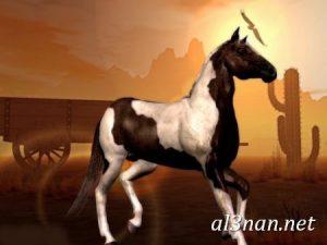 صور-حصان-رمزيات-و-خلفيات-خيل-عربي-اصيل-2019_00228-1-300x225 صور حصان رمزيات و خلفيات خيل عربي اصيل 2019