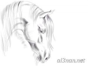 صور-حصان-رمزيات-و-خلفيات-خيل-عربي-اصيل-2019_00230-1-300x225 صور حصان رمزيات و خلفيات خيل عربي اصيل 2019
