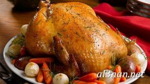 صور دجاج رمزيات و خلفيات فراخ بانواعها 00247 300x169 صور دجاج رمزيات و خلفيات فراخ بانواعها
