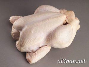 صور دجاج رمزيات و خلفيات فراخ بانواعها 00259 300x225 صور دجاج رمزيات و خلفيات فراخ بانواعها