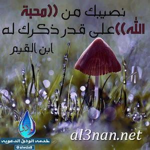 صور رمزيات اسلامية للفيس بوك والواتس اب رمزيات دينية 00247 صور رمزيات اسلامية للفيس بوك والواتس اب رمزيات دينية
