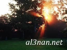 صور شروق الشمس رمزيات وخلفيات منظر شروق الشمس 00401 صور شروق الشمس رمزيات وخلفيات منظر شروق الشمس