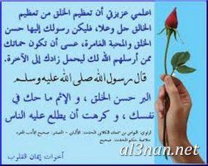 صور عن حقوق الزوج والزوجة بأحاديث صحيحة 00360 300x240 صور عن حقوق الزوج والزوجة بأحاديث صحيحة