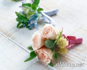 صور-ورد-2019-hd-احلي-الوان-ورد-باقات-زهور-جميلة_00370-300x240 صور ورد طبيعي, صور ورد ابيض, صور ورد جوري احمر, صور ورد جوري