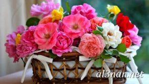 صور-ورد-2019-hd-احلي-الوان-ورد-باقات-زهور-جميلة_00376-300x169 صور ورد طبيعي, صور ورد ابيض, صور ورد جوري احمر, صور ورد جوري