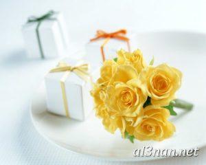-ورد-2019-hd-احلي-الوان-ورد-باقات-زهور-جميلة_00383-300x240 صور ورد طبيعي, صور ورد ابيض, صور ورد جوري احمر, صور ورد جوري