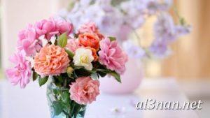 صور-ورد-2019-hd-احلي-الوان-ورد-باقات-زهور-جميلة_00392-300x169 صور ورد طبيعي, صور ورد ابيض, صور ورد جوري احمر, صور ورد جوري