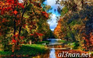 صور خلفيات جديدة احلى واجمل خلفيات روعة HD 00401 300x188 صور خلفيات جديدة احلى واجمل خلفيات روعة HD